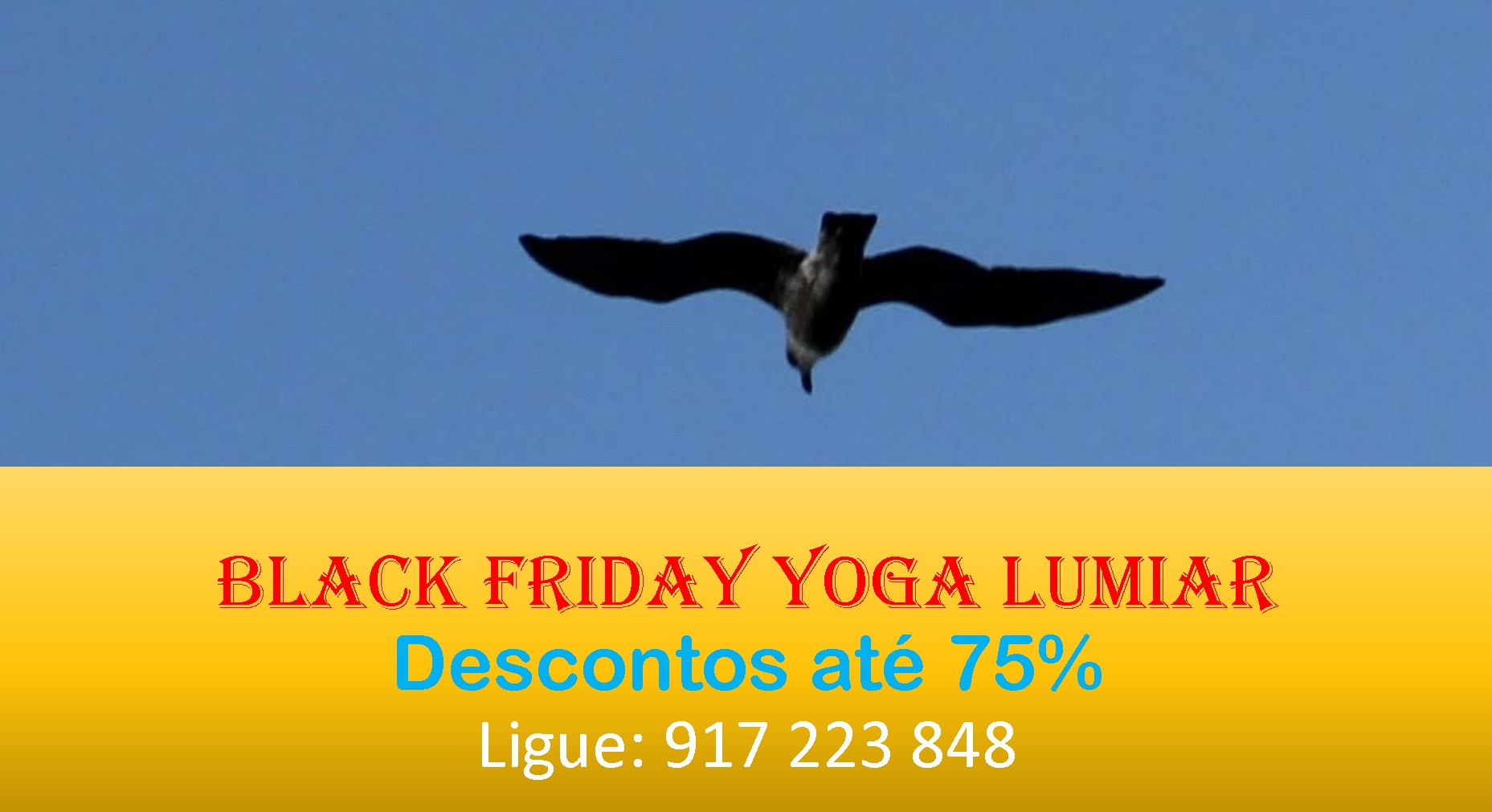 Black Friday Yoga Lumiar